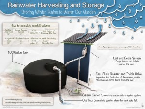 The Garden Classroom's Rainwater Harvesting System