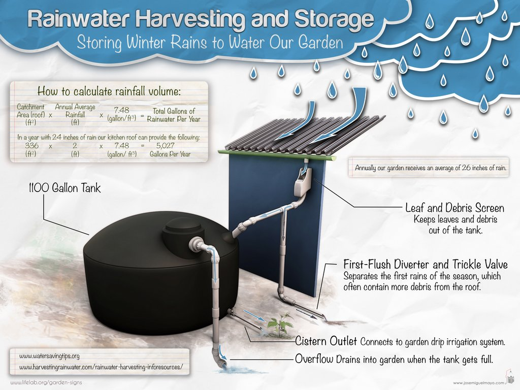 Life Lab » Blog Archive » Saving Water in the Garden