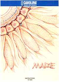 Maize Activity Guide for 5th to 8th Grades