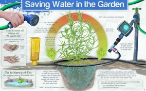 Saving Water in the Garden Sign Design
