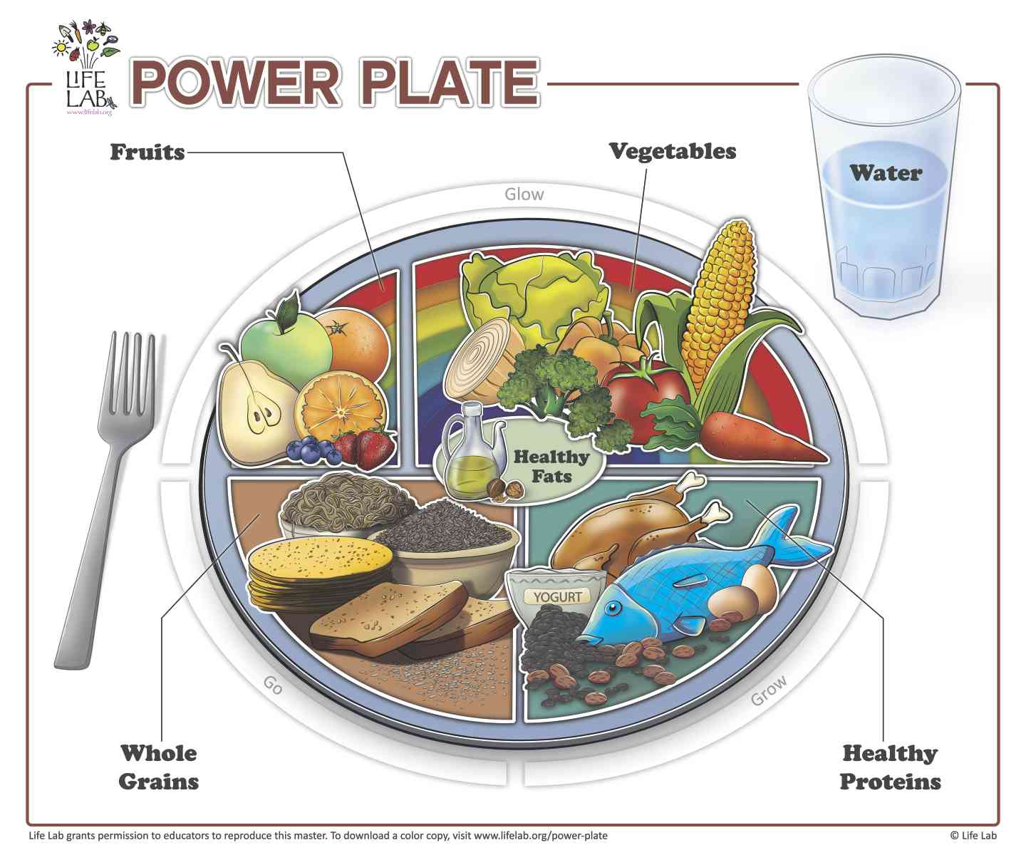 Workbooks spanish food worksheets : Life Lab » Power Plate