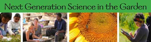Next Generation Science in the Garden