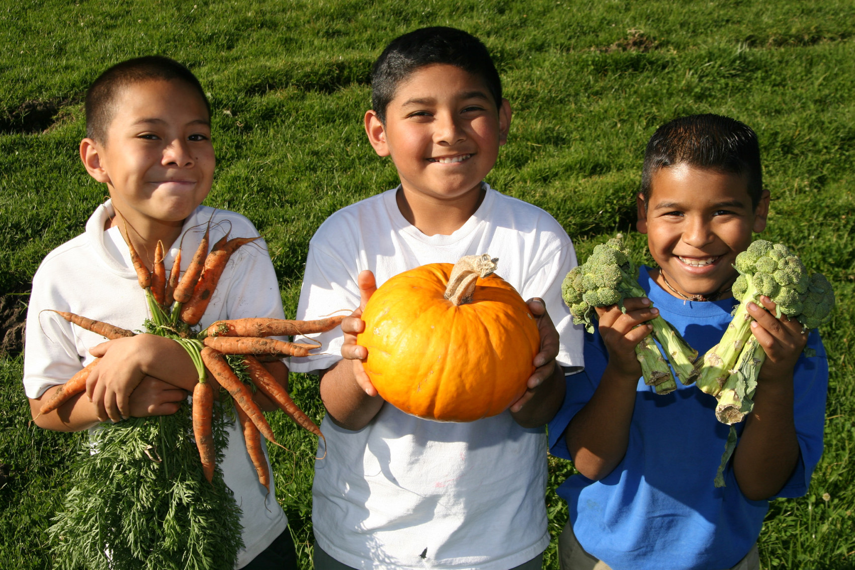 blooming classroom kids holding vegetables pumpkin carrots